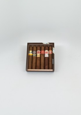 Seleccion Robusto 6 cigares